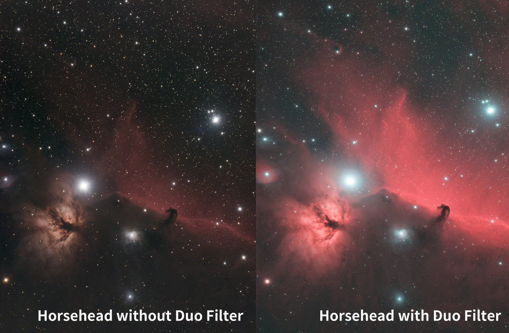 Horsehead-(with without)-Filter(1)