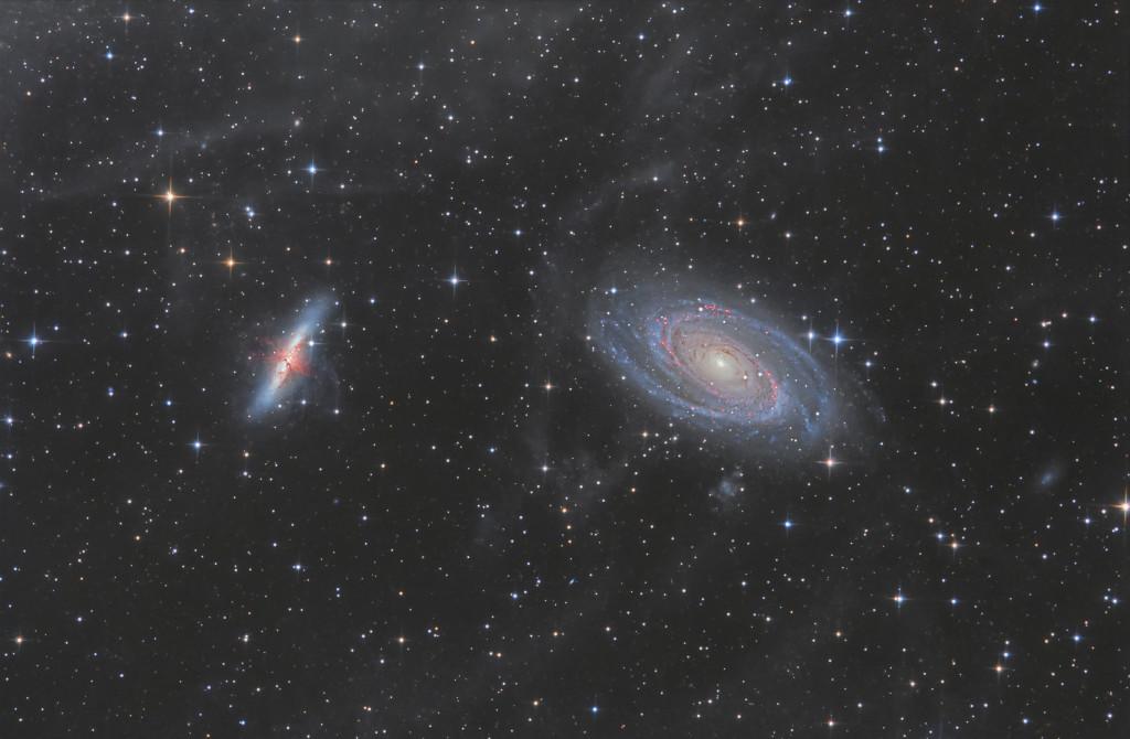 M81-82 IFN
