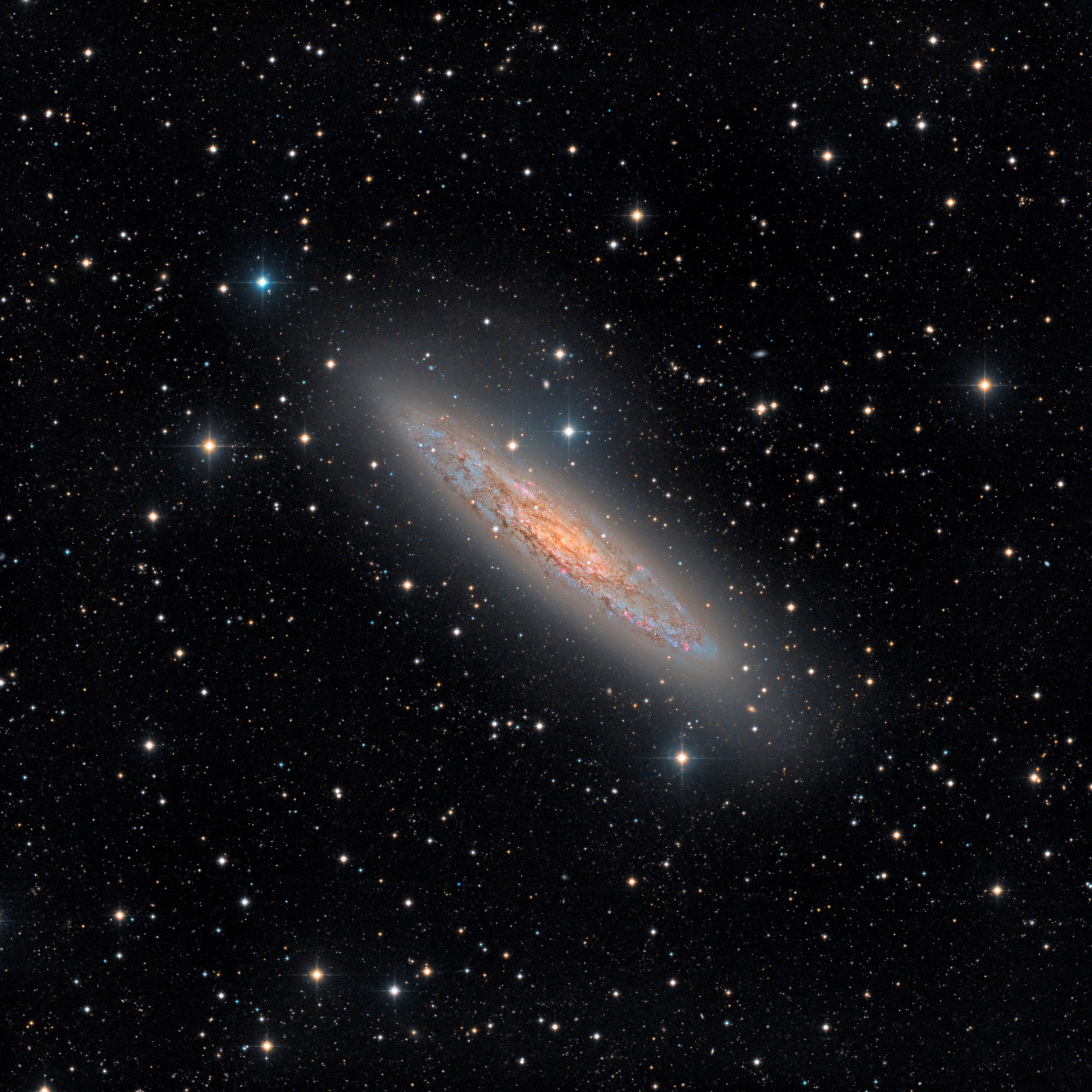 NGC253 with the Rifast 500 - FLI Proline 16803
