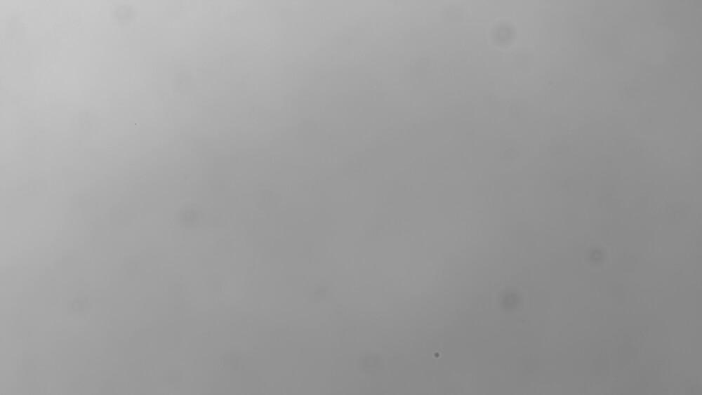 flat-sun-halpha-asi-camera-290-174